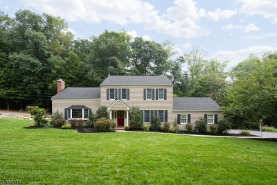 Morristown Town, Morris Twp. Single Family Home For Sale: 33 Harwich Road