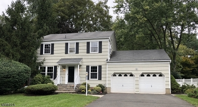 Bernardsville Boro Single Family Home For Sale: 33 Dayton Cres