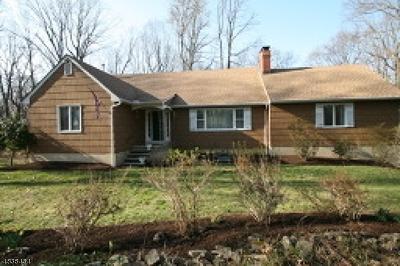 Bethlehem Twp., High Bridge Boro Single Family Home For Sale: 5 Overlook Rd