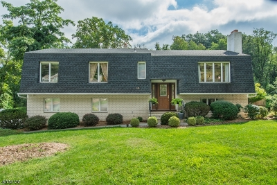 Woodland Park Single Family Home For Sale: 543 Rifle Camp Rd