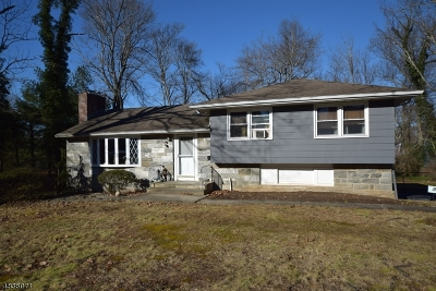 Berkeley Heights Single Family Home For Sale: 595 Mountain Ave