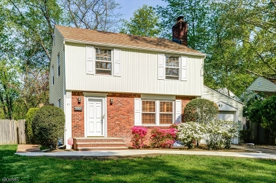 Springfield Single Family Home For Sale: 61 Denham Rd