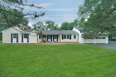 Bedminster Twp. Single Family Home For Sale: 110 Somerset Ter