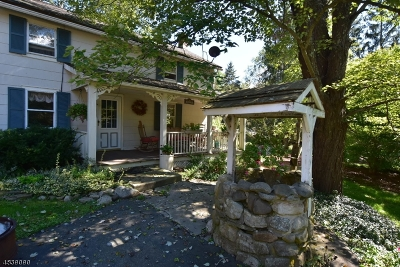 Stillwater Twp. Single Family Home For Sale: 923 County Route 619