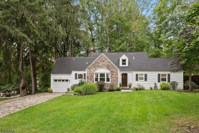 Morris Plains Boro Single Family Home For Sale: 48 Lakeview Dr