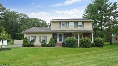 Roxbury Twp. Single Family Home For Sale: 36 Ridge Rd