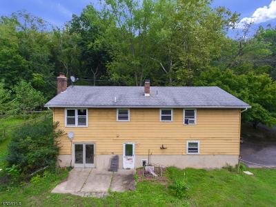 Glen Gardner Boro, Hampton Boro, Lebanon Twp. Single Family Home For Sale: 11 Musconetcong River Rd