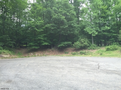 Mendham Twp. Residential Lots & Land For Sale: 12 Michael Road