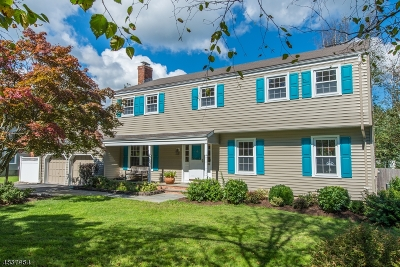 Mendham Boro NJ Single Family Home For Sale: $749,900