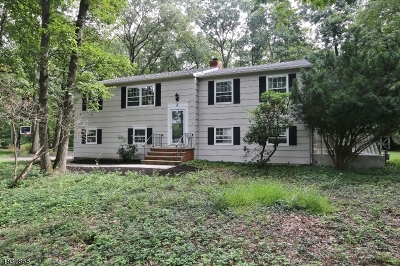 Parsippany-Troy Hills Twp. Single Family Home For Sale: 2 Long Ridge Rd