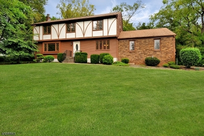 Bridgewater Twp. Single Family Home For Sale: 464 Foothill Road