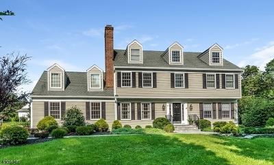 Bernards Twp., Bernardsville Boro Single Family Home For Sale: 45 Jeffrey Ct