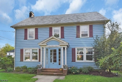 Morristown Town Single Family Home For Sale: 30 Walker Ave
