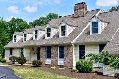 Tewksbury Twp. Single Family Home For Sale: 47 Philhower Rd