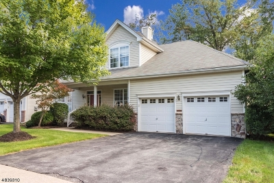 Raritan Twp. Single Family Home For Sale: 30 Colts Ln
