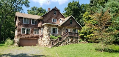 Bridgewater Twp. Single Family Home For Sale: 811 Route 202/206