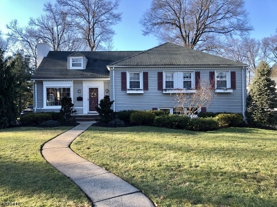 Westfield Town NJ Single Family Home For Sale: $799,900