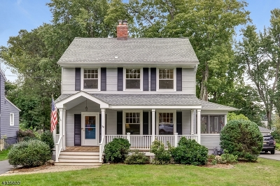 Chatham Boro Single Family Home For Sale: 38 Elmwood Ave