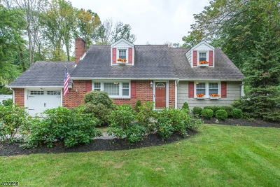 Morris County Single Family Home For Sale: 91 Taylortown Rd