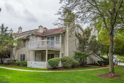 Bedminster Twp. Condo/Townhouse For Sale: 25 Sage Ct