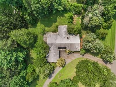 Franklin Lakes Boro Single Family Home For Sale: 380 Algonquin Rd