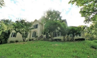 Delaware Twp. Single Family Home For Sale: 41 Sutton Farm Rd