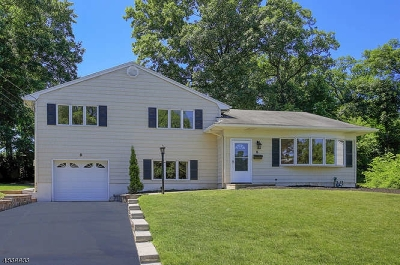 Fanwood Boro Single Family Home For Sale: 6 Ridge Way
