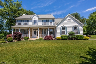Mount Olive Twp. Single Family Home For Sale: 6 Bromley Ct