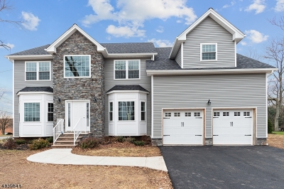 Edison Twp. Single Family Home For Sale: 2 New Brooklyn Road