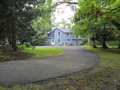 Franklin Lakes Boro Single Family Home For Sale: 30 Pulis Ave