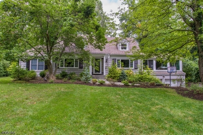 Single Family Home For Sale: 100 Old Hollow Rd