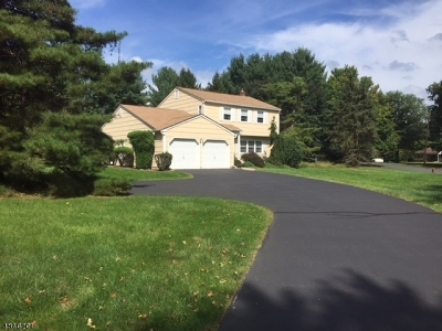 Clinton Twp. Single Family Home For Sale: 2 Fawn Dr