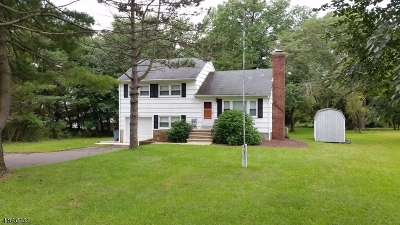 Bridgewater Twp. Single Family Home For Sale: 763 Route 202/206