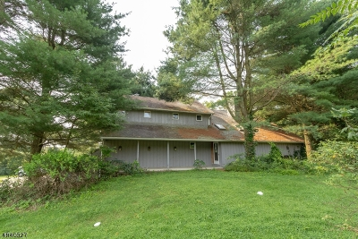 Sussex County Single Family Home For Sale: 36 Rt 521