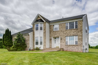Franklin Twp. Single Family Home For Sale: 14 Lenape Dr