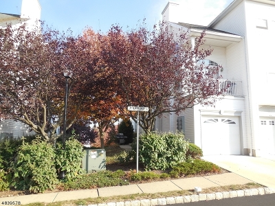 Morristown Town, Morris Twp. Condo/Townhouse For Sale: 11 Timothy Ct