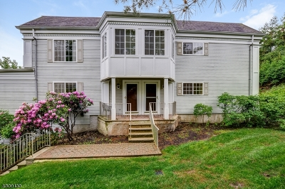 Chatham Twp Condo/Townhouse For Sale: 104 Riveredge Dr
