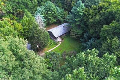 Bernardsville Boro Single Family Home For Sale: 179 Jockey Hollow Rd