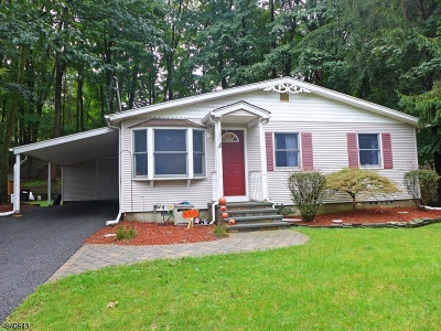 Oakland Boro Single Family Home For Sale: 680 Ramapo Valley Rd