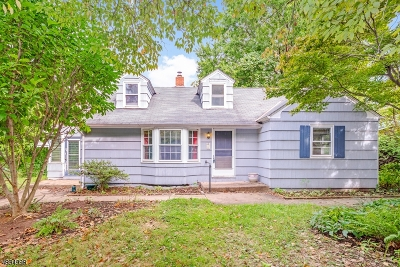 Hunterdon County Single Family Home For Sale: 2 Lincoln Ave