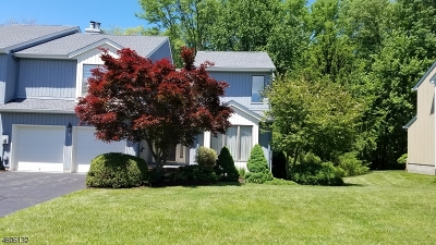 Morris Twp. Condo/Townhouse For Sale: 12 Raven Dr