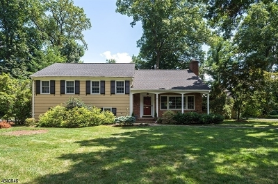 Berkeley Heights Single Family Home For Sale: 73 Crest Dr