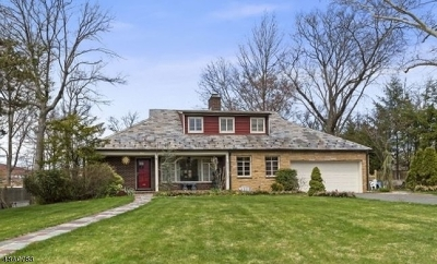 Westfield Town Single Family Home For Sale: 22 Stoneleigh Pk.