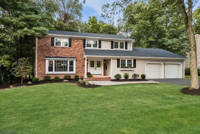 Berkeley Heights Single Family Home For Sale: 119 Spring Ridge Dr