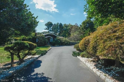 Franklin Lakes Boro Single Family Home For Sale: 710 High Mountain