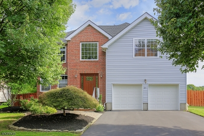 Hillsborough Twp. Single Family Home For Sale: 27 Campbell Rd