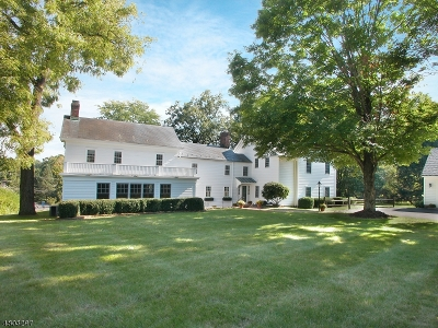 Peapack Gladstone Boro Single Family Home For Sale: 3 Old Chester Rd