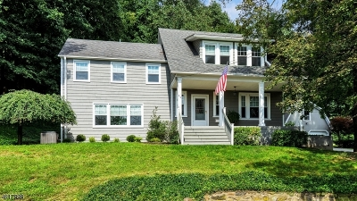 Bernardsville Boro Single Family Home For Sale: 29 Somerset Ave