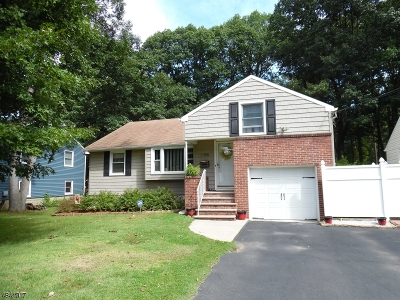Scotch Plains Twp. Single Family Home For Sale: 1195 Hetfield Ave