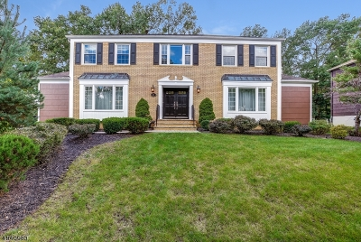 East Hanover Twp. Single Family Home For Sale: 82 Tiffany Dr